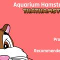 Aquarium Hamster Cages