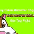 Easy Clean Hamster Cages
