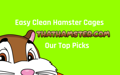 Easy-Clean Hamster Cages ? The Best Time-Saving Cage Options